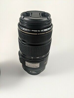 Canon EF 75-300mm f/4.0-5.6 IS USM Lens