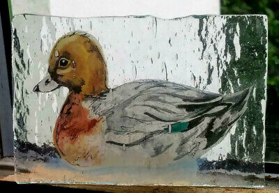Stained Glass Widgeon Duck - Kiln fired transfer fragment vintage pane!