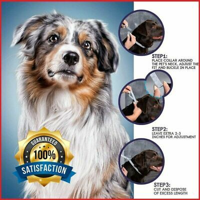 Flea and Tick Collar for Large Dogs protection Prevention 8month Anti insect Hot