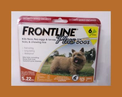 Frontline Plus for Dogs Small Dog 5-22 pounds, Flea and Tick Treatment - 6 MONTH