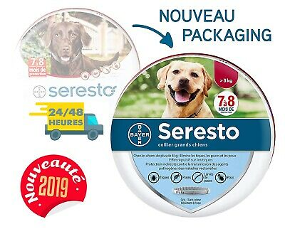 Bayer Seresto Collier Antiparasitaire pour Chien Anti-puce Anti-tique Antipuce