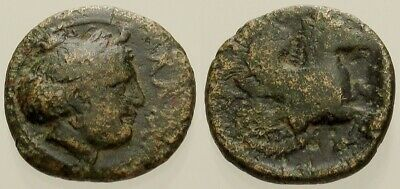 046. Greek Bronze Coin. LAMPSACUS. AE-11.Female Head / Pegasus. aVF