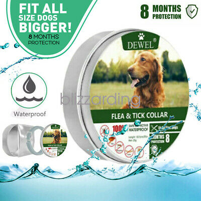 Dewel Adjustable Flea and Tick Collar Small Medium Large Dogs 8 Month Protection
