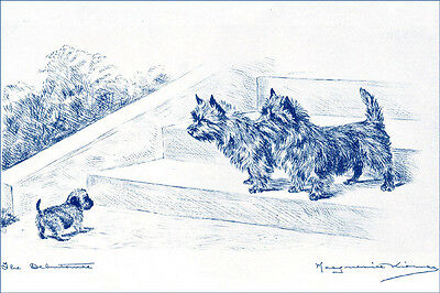 Cairn Terrier Dogs vs Snowman 1934  TARTAN Kirmse ~ LARGE New Blank Note Cards