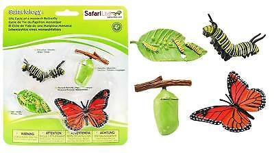 Safari Life Cycle Of A Monarch Butterfly Kids Childrens Educational Toy Learning