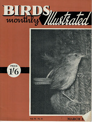 Birds Illustrated Monthly Magazine 1961 March AOV Canaries Wren 2677F