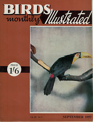 Birds Illustrated Monthly Magazine 1957 September Cockatiels Firefinch 2639F