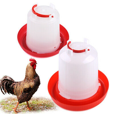 Auto Plastic Chicken Feeder Drinker for Poultry Chick Hen Quail Bantam Fowl