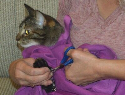 Cat-in-the-bag Cozy Comfort Carrier - Small or XSmall + 2 FREE Gifts! READ THIS