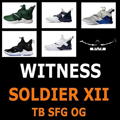 buy online e9d2f 3ad38 Mens Nike Lebron Soldier Xii 12 Sfg