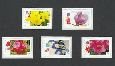 BEE KALMIA MAGNOLIA LILY NARCISSUS SALVIA Picture Postage sts Canada2014 [p83fl5