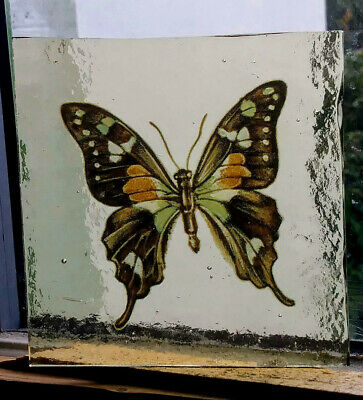 Stained Glass Butterfly  - vintage Kiln fired transfer fragment pane piece!