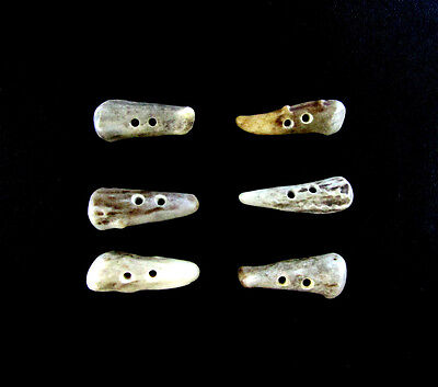 """Premium Antler Buttons,1  1/4""""Toggles,Tines,6 Bumpy Pieces,3/32"""" Hole,114-41"""