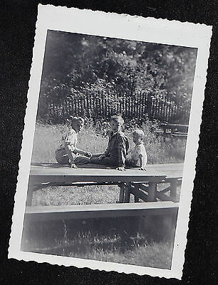 Vintage Antique Photograph Three Adorable Little Boys Sitting on Picnic Table