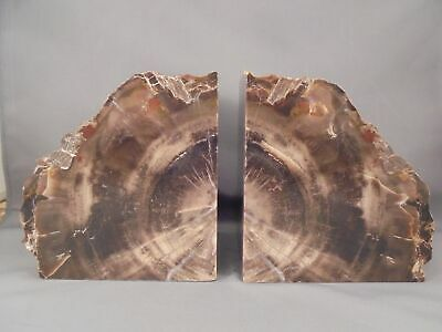 "Pair Petrified Wood Bookends Excellent Approx 4 1/2"" x 4 1/4"" x 3"""
