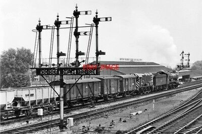 Photo  Gwr Loco No 6953 Leighton Hall And New D3031. Kings Meadow Goods Depot