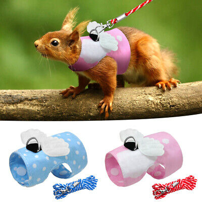Guinea Pig Ferret Hamster Squirrel Small Animals Harness & Long Tracking Leash