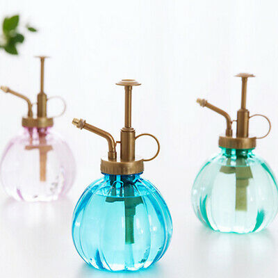 Mini Plant Mister Vintage Style Decorative Plastic Water Spray Bottle with Pump