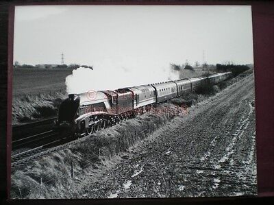 Photo  10 X 8 Inch Lner A4 Class Loco No 4498 'Sir Nigel Gresley'  With The Whit