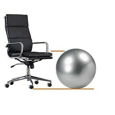 Ball Chair Balance Office Fitness Yoga Exercise Desk Home Adjustable Strong NEW
