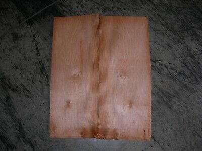 Maple Cluster Wood Veneer. 8 x 22, 24 Sheets.