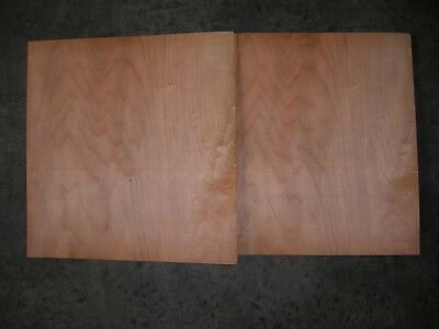 Maple Cathedral Wood Veneer. 15 x 15.5, 25 Sheets.