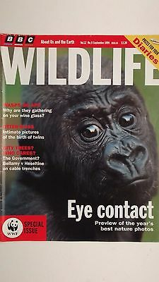 BBC WILDLIFE MAGAZINE, SEPT 1994 feat OTTERS, WILDLIFE PHOTOGRAPHER OF THE YEAR