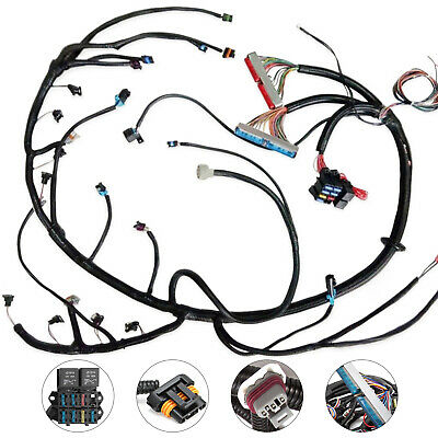Hot 97 02 Dbc Ls1 Standalone Wiring Harness With 4l60e Non Electric