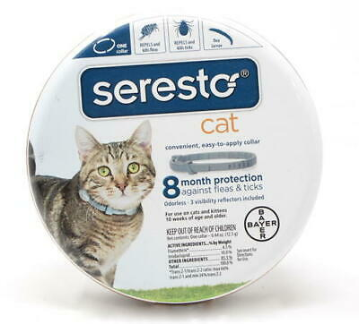 Bayer Seresto Flea and Tick Collar for Small Dog and Cat 8 Month Protection