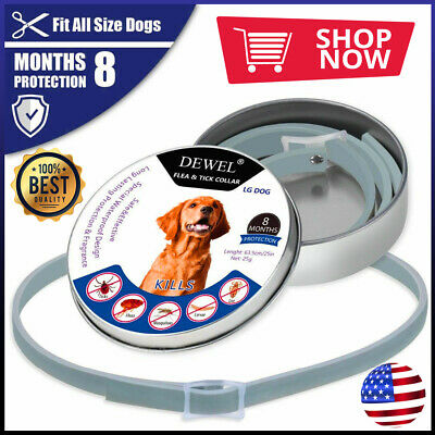 Seresto-Dewel Flea & Tick Collar For Dogs Over 18lb 8 Months Protection 63cm USA