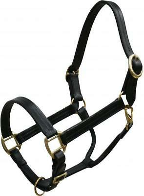 BLACK Triple Ply Leather Horse Size Halter Brass Hardware! NEW HORSE TACK!