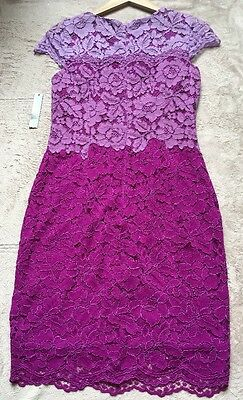 Tahari Arthur S. Levine Kaylee Lace OvErlay Dress,Sz 4, Cap Sleeves, Purple NWT