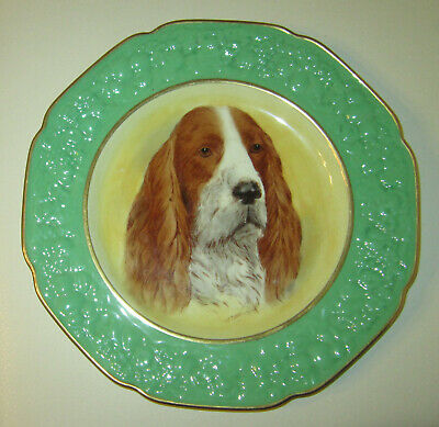 Hand plainted English plate  - Spaniel portrait, signed by the srtist Queen Mary