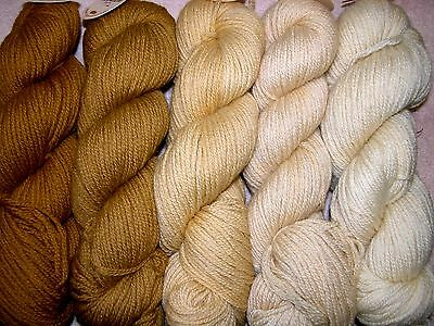Old Gold Family ~ New Paternayan Wool 3ply Persian Yarn Needlepoint Crewel