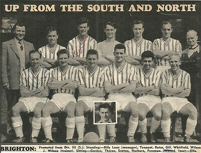 Football Autographs Brighton FC Signed Team Picture 17cm x 13cm Approx F607