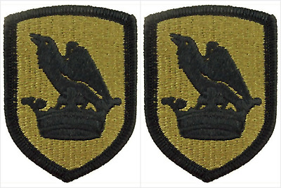 2 Pack Washington Army National Guard OCP Scorpion Hook Back Military Patches