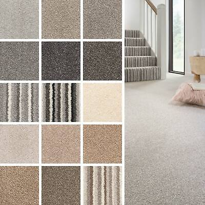 Royal Saxony Stripe Carpet Carpet Vidalondon