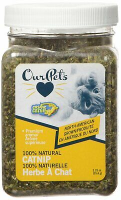 OurPets PREMIUM North-American Grown Catnip 1.25 oz Jar Cosmic Catnip for Cats
