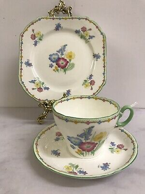 Shelley Old Wildflowers Vintage teacup trio saucer side plate
