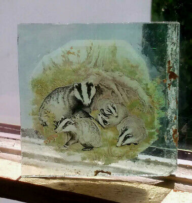 Stained Glass Badgers -  Kiln fired mouthblown green fragment vintage pane!