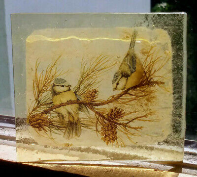 Stained Glass Pair of Blue Tits - Kiln fired fragment bird pane amber glass!