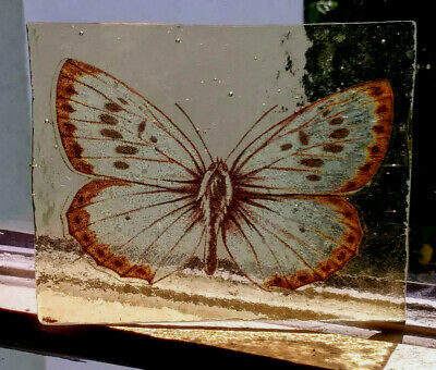 Stained Glass Butterfly - vintage Kiln fired fragment pane piece!