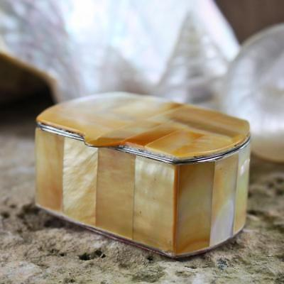 Mother of Pearl Pill or Trinket Box | Gold Lip Pearl Oyster Shell