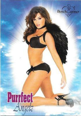 2004 BENCHWARMER PURRFECT ANGELZ MAGGIE CASH PA 10 of 12