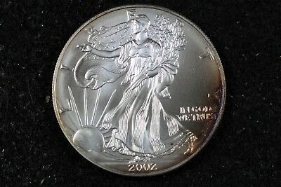 Estate Find 2002 - American Silver Eagle!!! #H14670