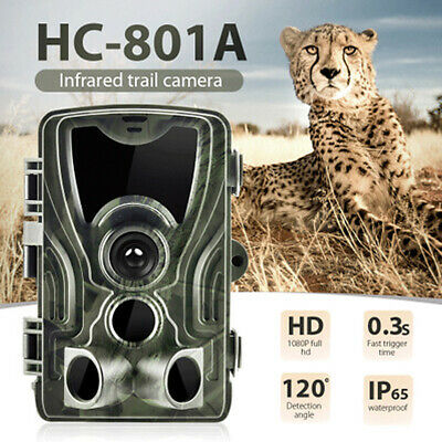 16MP Field Hunting Trail Camera HD 1080P Wildlife Scouting Cam Night Vision IP65
