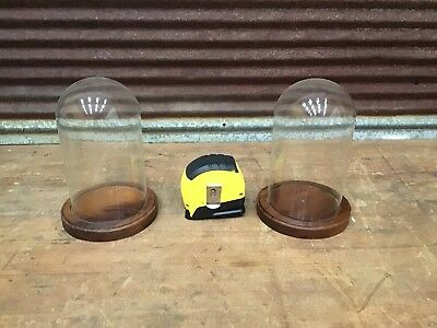 RARE SMALL SIZE PAIR Antique Glass Dome Display Case-NICE CONDITION