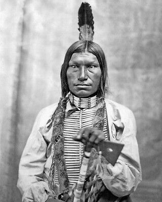 1881 Native American Indian CHIEF LOW DOG 8x10 Photo Oglala Sioux Print Poster
