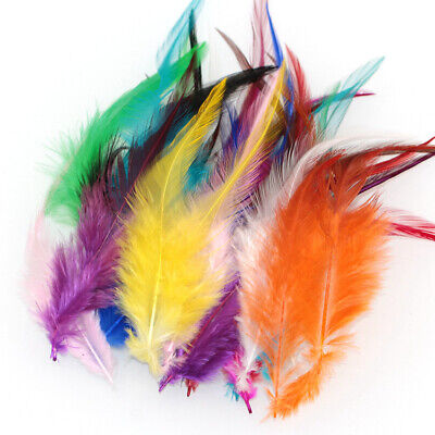 50pcs Beautiful Rooster Tail Little Feathers For DIY Carnival Decoration Craft