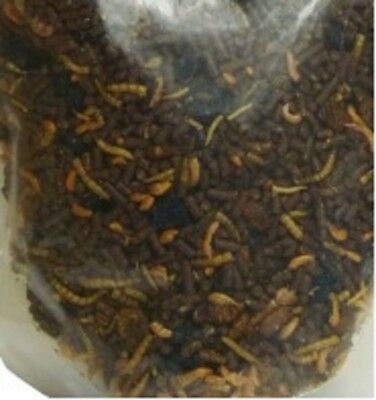 Natures Grub - Bugs, Grubs and Berries 250g